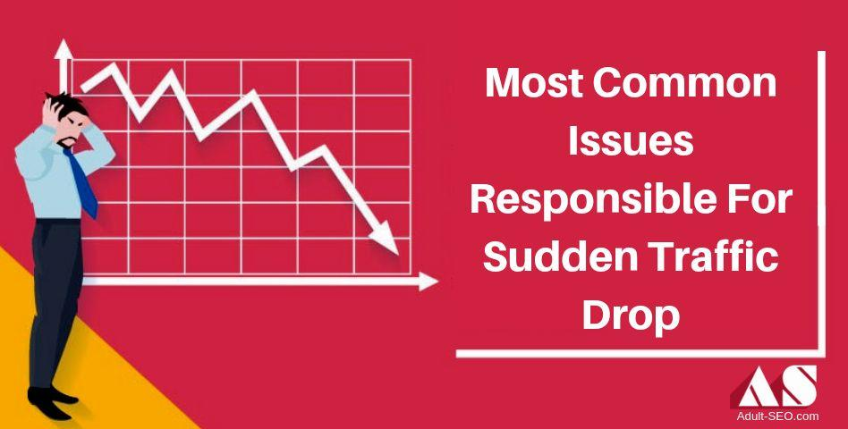 Most Common Issues Responsible For Sudden Traffic Drop